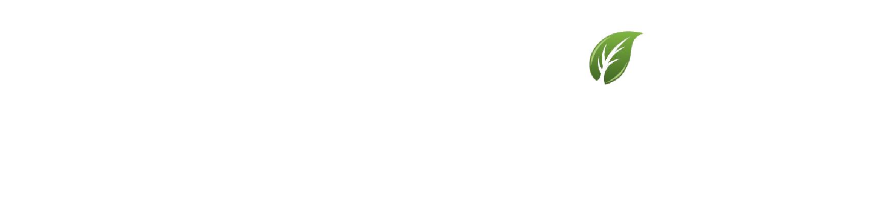 The Natural Path Logo